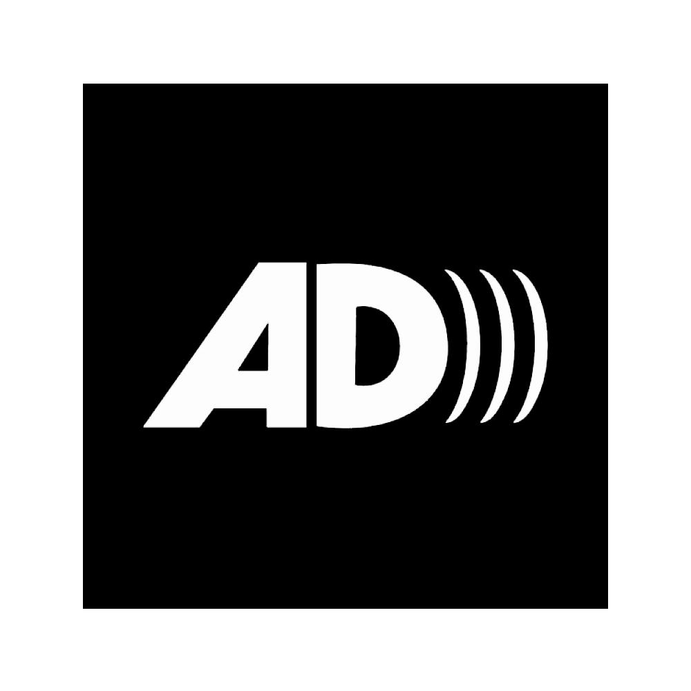 Concerts proposés en audiodescription